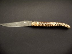 Laguiole 12 cm full handle coral damascus blade
